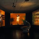 FREEDOM IS NOT FOR FREEInstallation (Videos, Objekte), Hamburger Kunsthalle